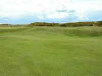 Foxy's plateau green