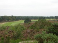 Sunningdale New, the long 6th