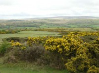 Dartmoor from the 8th Tee