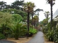 Crest in gardens
