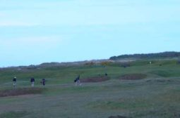 carnoustie 5th
