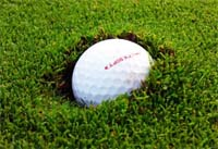 golf ball plugged,