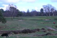 james braid, walton heath golf club, Herbert fowler